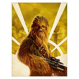 Star Wars. Размер: 30 х 40 см